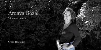 Presentación Amaya Bozal